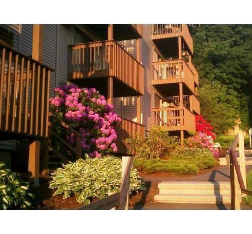 Condo Home Rented in Danbury CT 06811. Ranch house near waterfront with swimming pool.